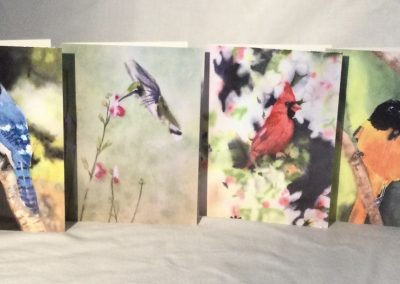 Back Yard Birds Note Cards